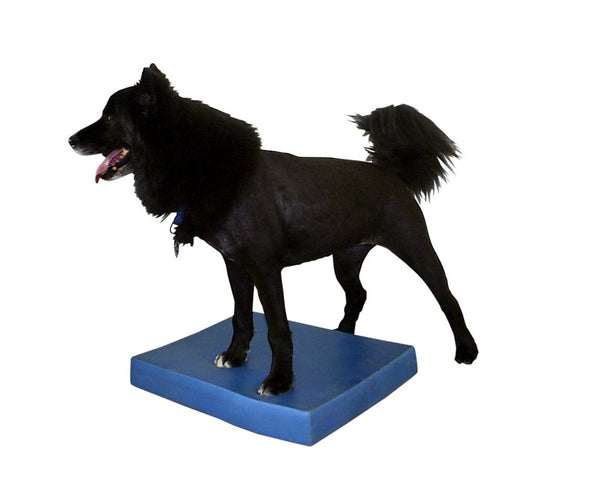 FitPAWS® Balance Pad - Dog Sport Supply Company