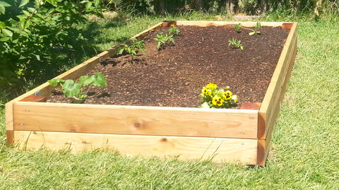 Raised Bed 4x8 includes organic soil