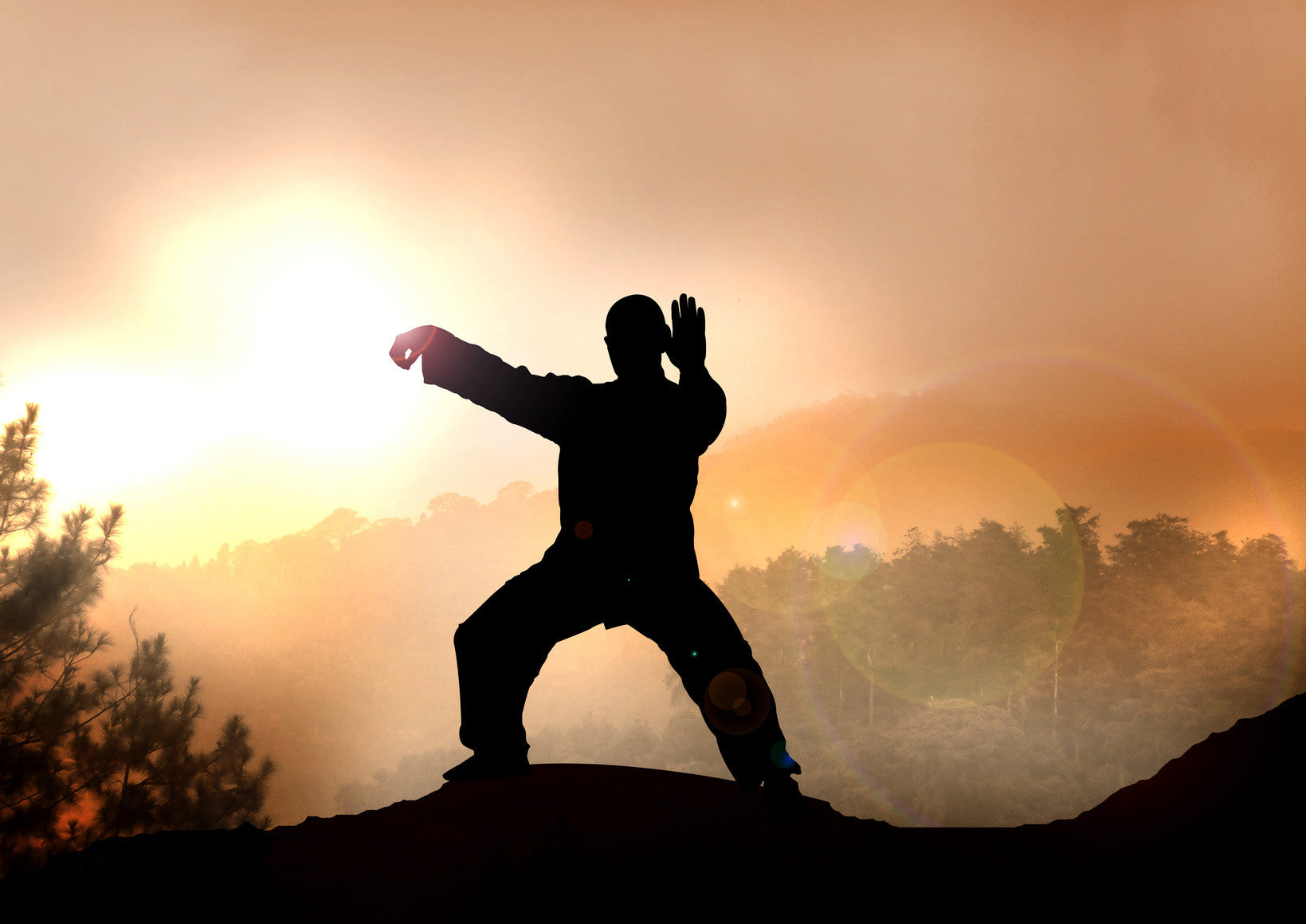 Image result for Traditional Martial Arts