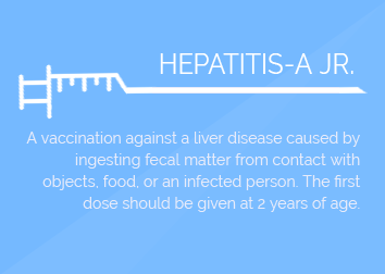 HEPATITIS A Jr. (per shot)