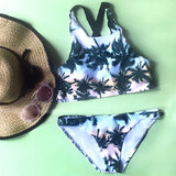 Sweet Success Printed Bikini Sets