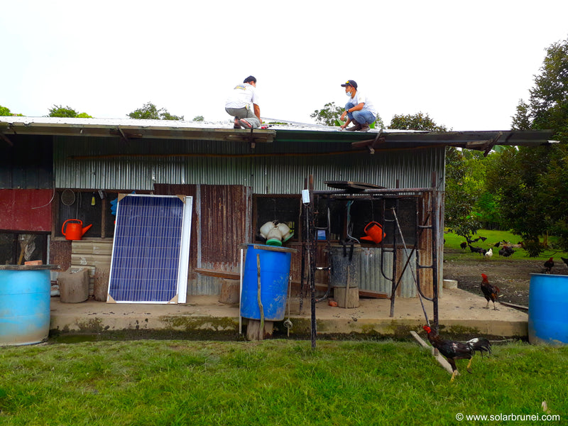 A solar powered chicken farm!