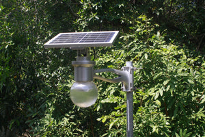 Why choose solar lights?