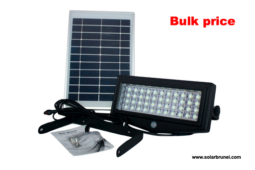 Security Floodlight 1000 LM - 2 units/lot - Everything Solar - 1