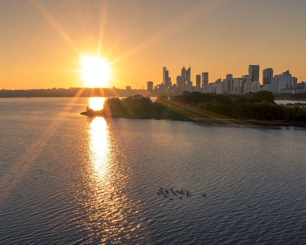 Sunset and pelicans in Perth