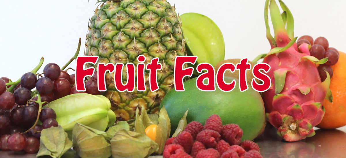 Fruit Facts Teil 2