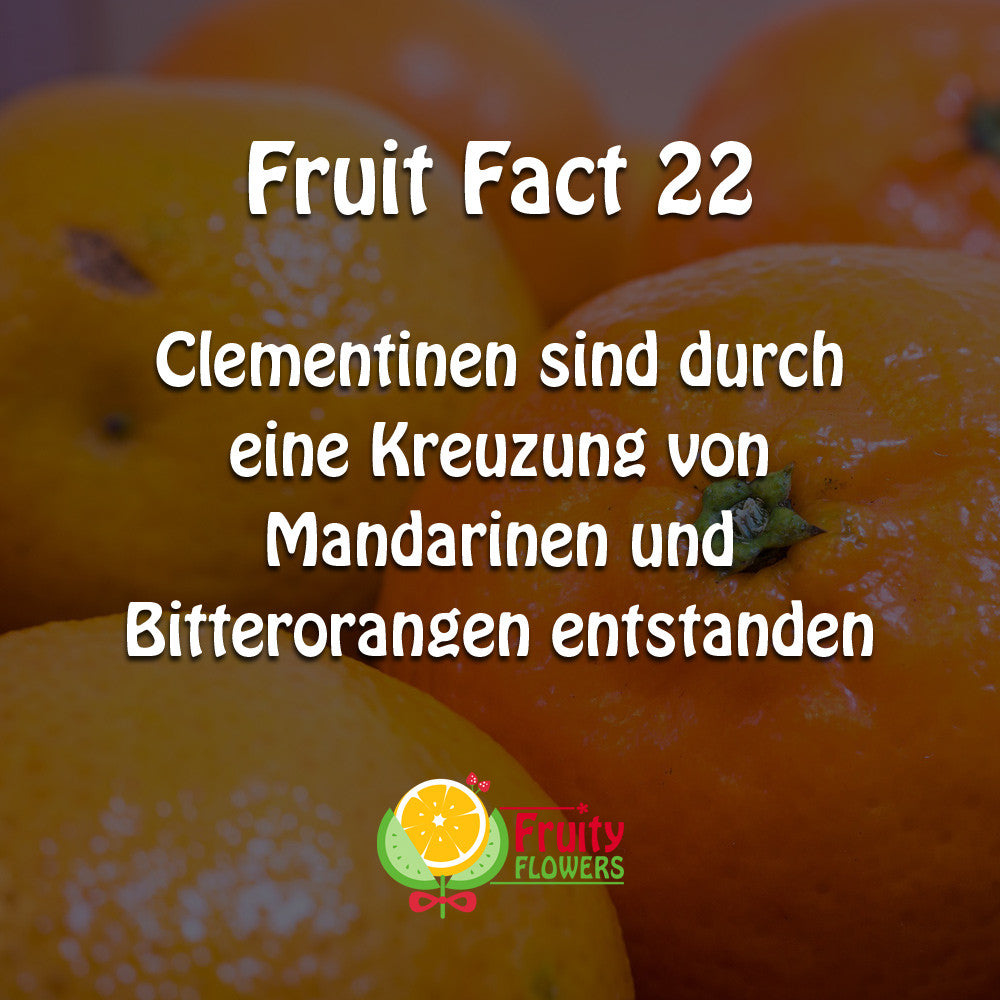 Fruit Fact Clementine