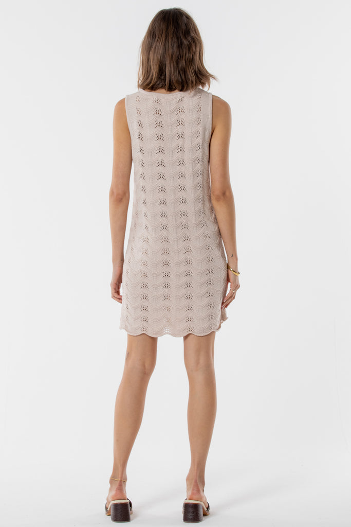 Avalon Knitted Mini Dress -  Blush