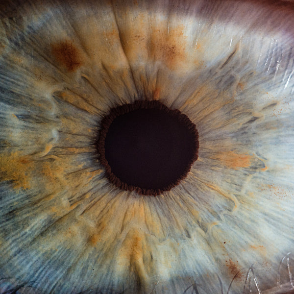 Up close image of the human eye.