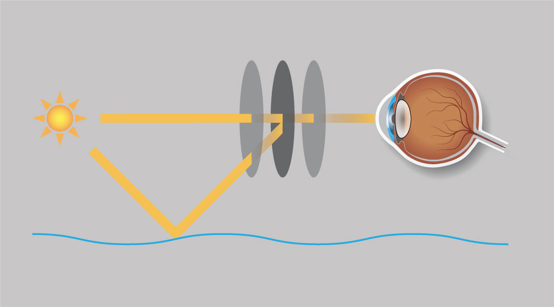 Illustration how polarised lenses reduce reflected glare