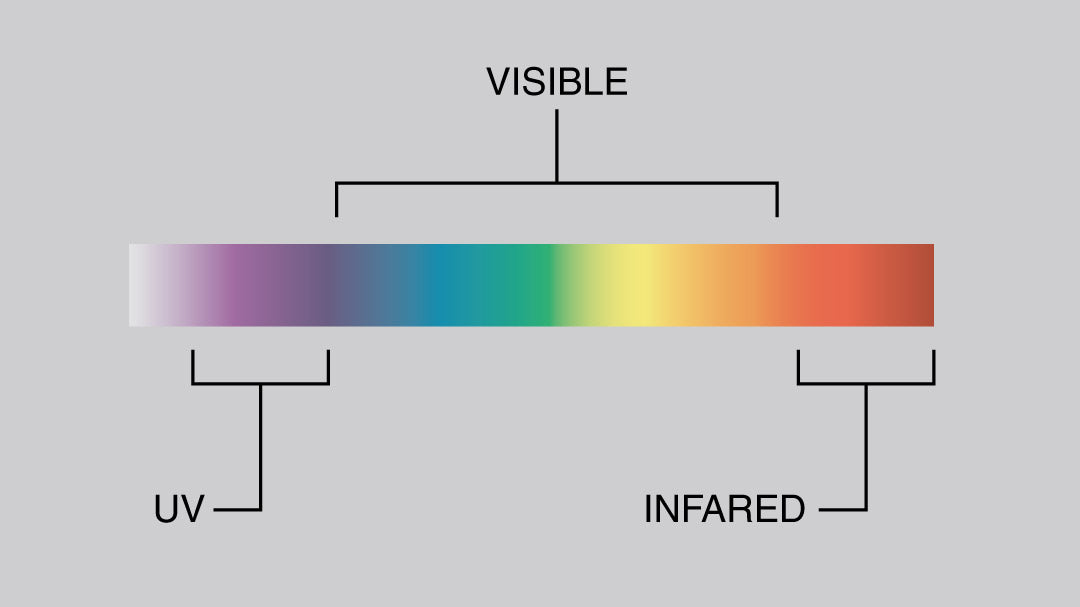 Illustration of the visible light spectrum