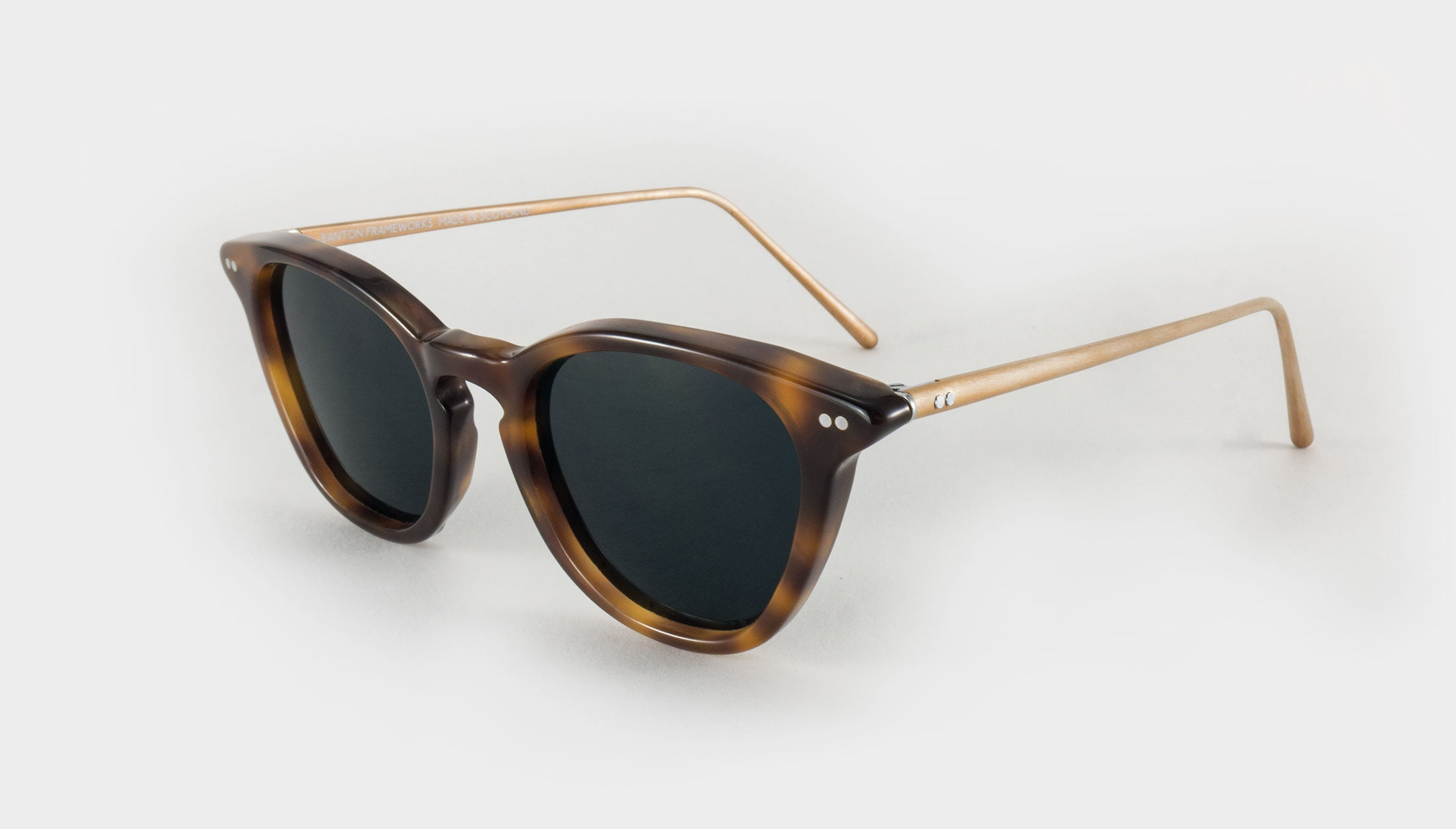 polarised tortoise shell sunglasses side view