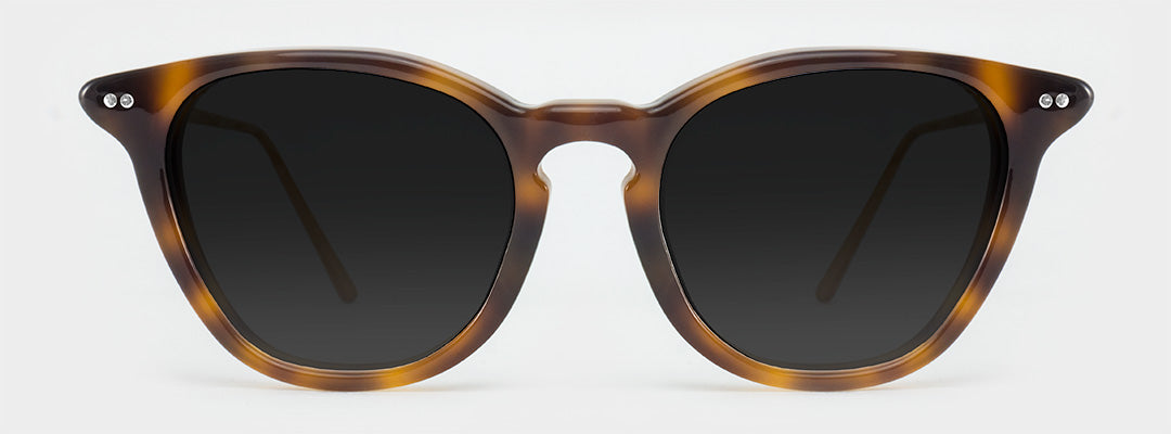 polarised tortoise shell sunglasses