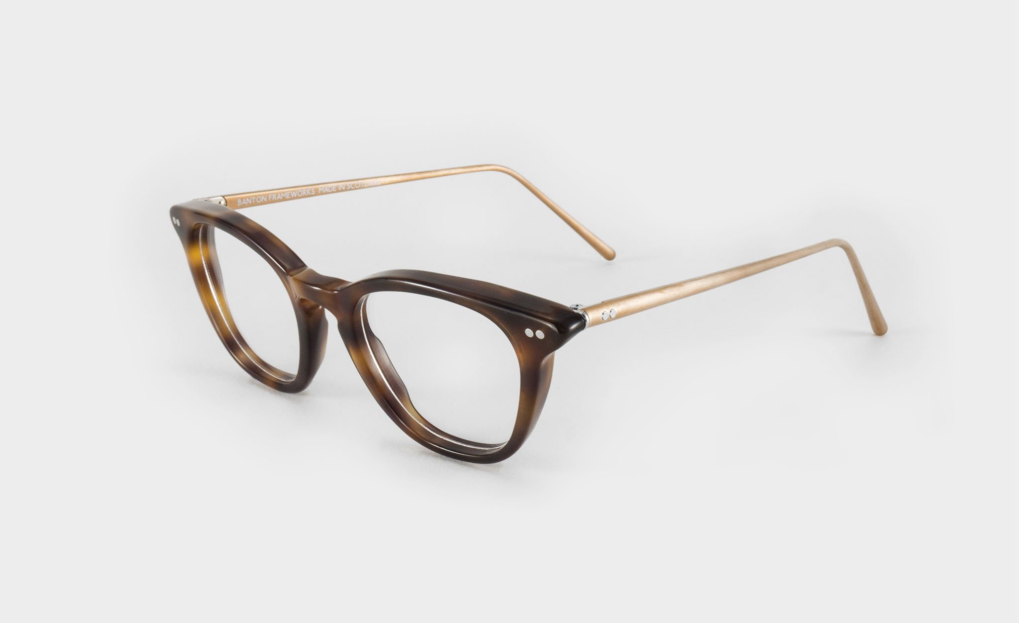 tortoise shell glasses side view