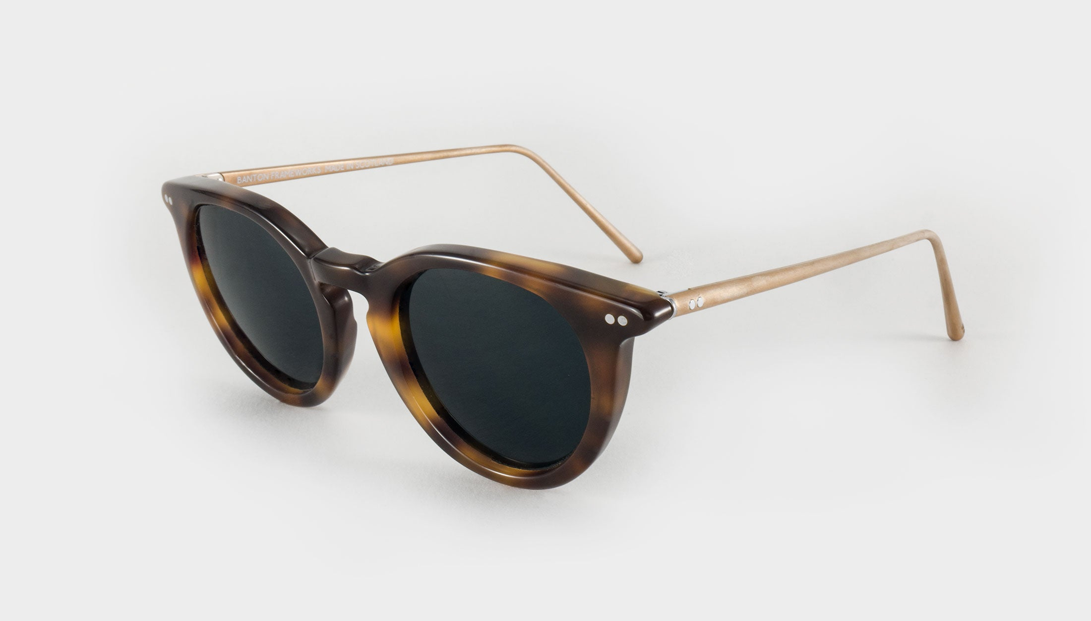 womens round tortoiseshell sunglasses side view