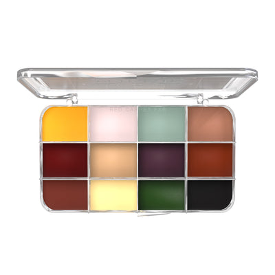 Dashbo The Ultimate 12 Colour Essentials Palette - Red Carpet FX - Professional Makeup