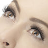 Fever False Eyelashes - Lengthening Natural Black - Red Carpet FX - Professional Makeup