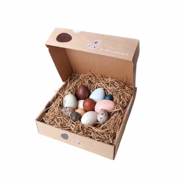 moon picnic dozen toy eggs perfect for easter