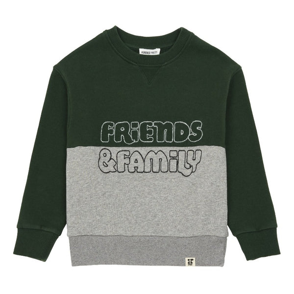 hundred pieces friends & family sweatshirt green/grey, kids pullover tops, color block