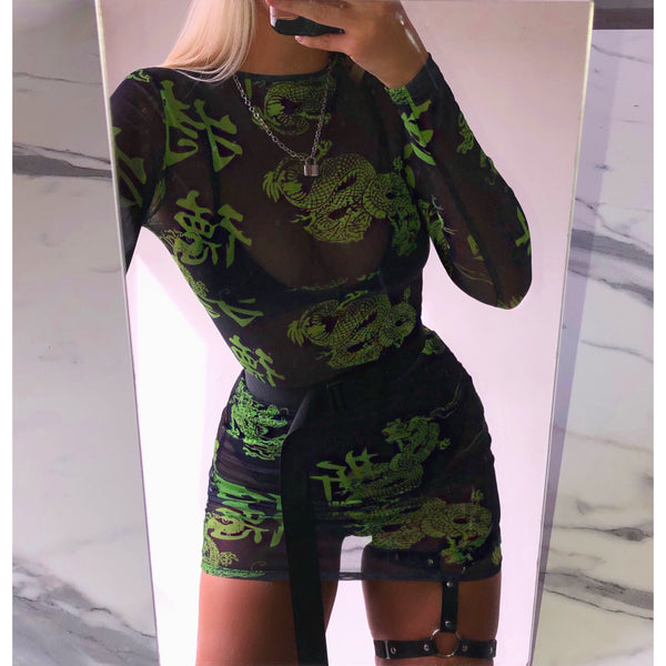 Dragon Mesh Long Sleeve Dress