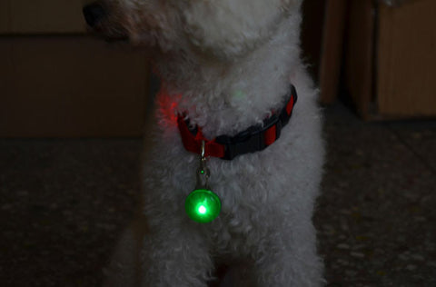 Collar - LED Clip-On Dog Collar Safety Light