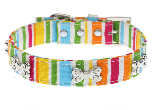 Collar - Pastel Dog Bone Rhinestone Collar