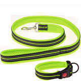 Matching Collar and Leash