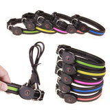New LED Dog Collar w/ Rechargeable USB