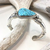Natural Kingman Turquoise By Albert Lee