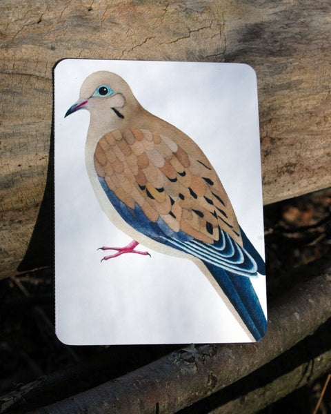 Dove Totem Card  TC-50