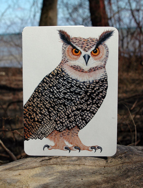 Owl (temporarily out of stock)