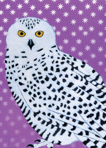 Snowy Owl - Winter Holiday - 17-04