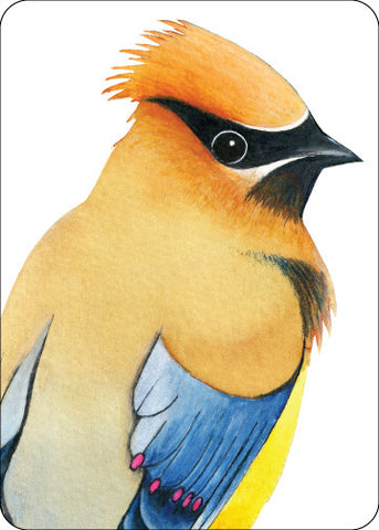 Waxwing Totem Card    TC-30