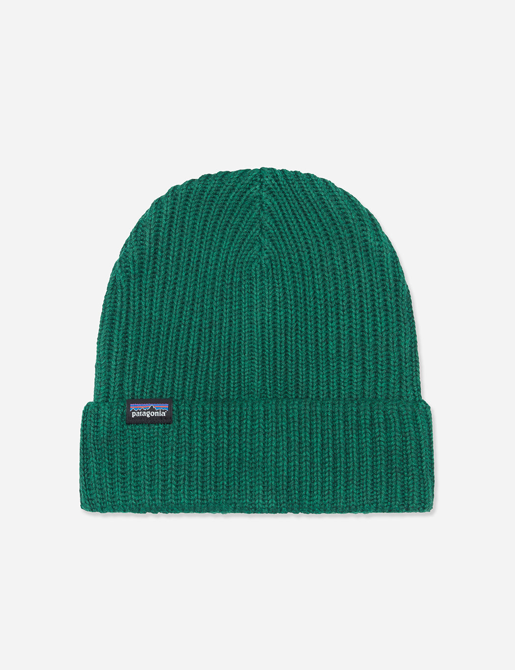 Patagonia Fisherman s Rolled Beanie Hat - Micro Green  051230a3a32