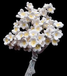 Baby's Breath Mini Bouquets 360 Count Box