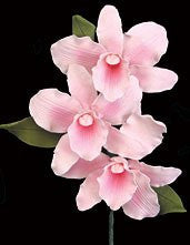 Cattleya Spray (New) - Pink 6 Count