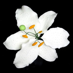 Casablanca Lily Single- Large White 18 Count