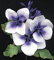 Lace Cap Hydrangea Spray - Violet 6 Count