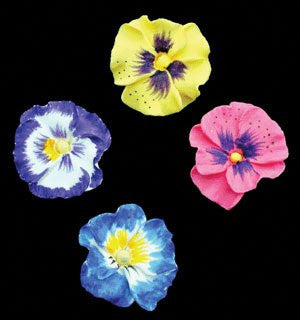 Pansy Petites - Mixed (Gumpaste) 40 Count