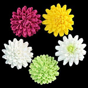 Chrysanthemum - Medium - Assorted 32 Count