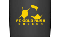 "3"" Gold Rush Decal"