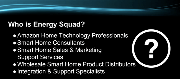 Energy Squad Service Options