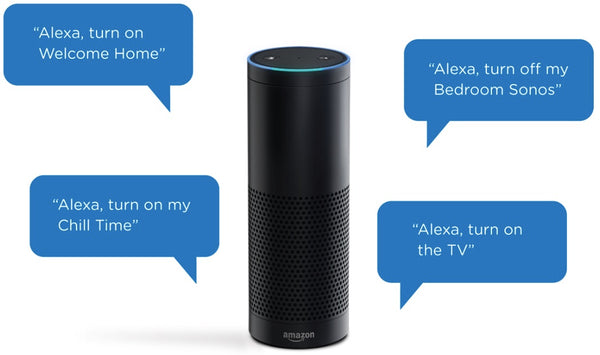 Energy Squad and Alexa Voice Integration using smart Alexa Skills