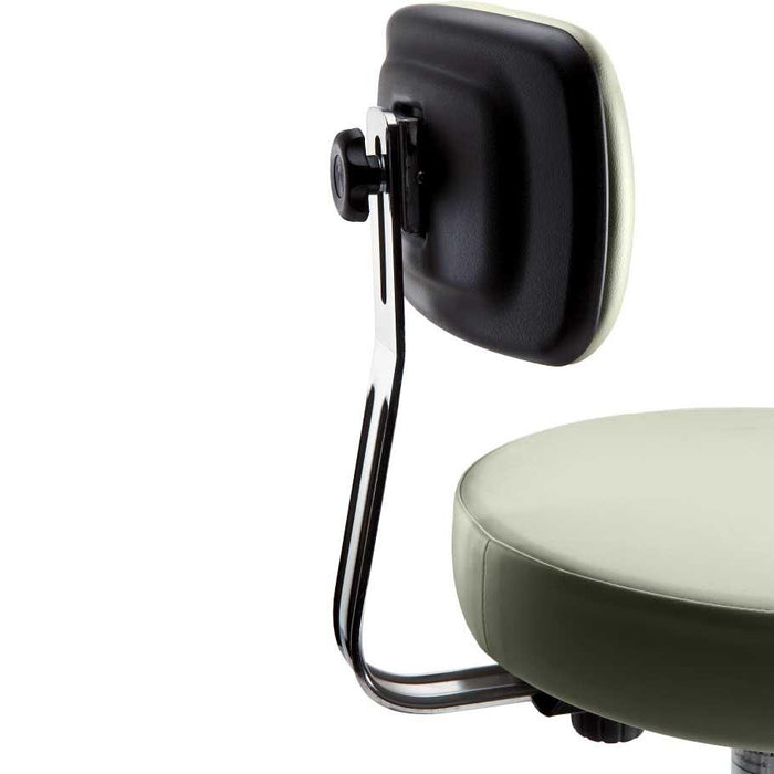 Ritter 273 Air Lift Stool Backrest