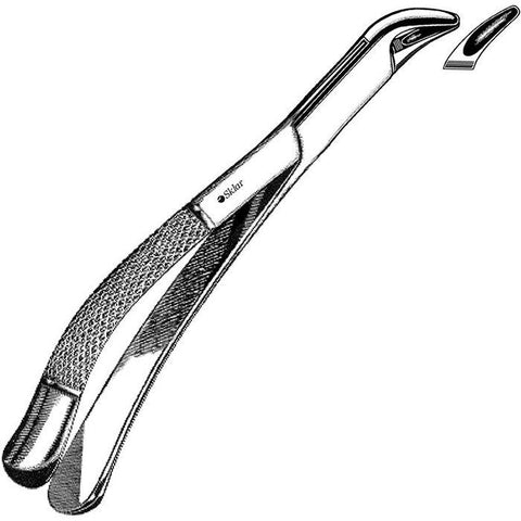 Sklar Childrens Extracting Forceps #151S