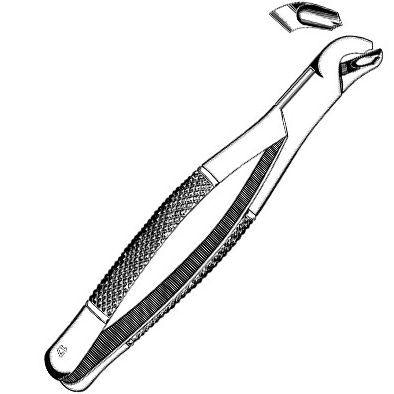 Sklar Extracting Forceps #17 - Premium OR-Grade with Straight Handle
