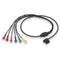 Zoll V-Lead Patient Cable for 12-Lead ECG