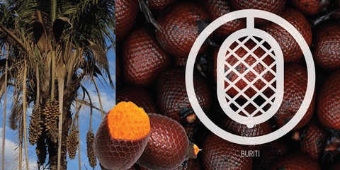 Buriti Fruit: Health and Beauty from the 'Tree of Life'.