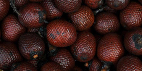 Buriti Oil: An Exotic Oil That Does Wonders for Your Hair