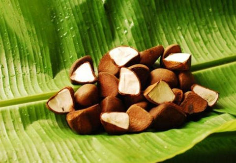 8 Benefits of Andiroba Oil for Skin and Hair